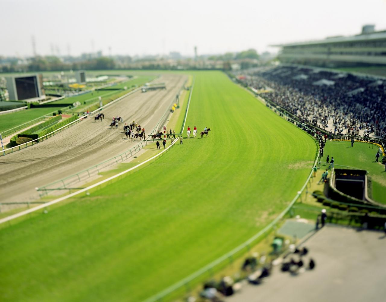 small planet / Nakayama Racecourse, Chiba, Japan / 2005 ©Naoki Honjo